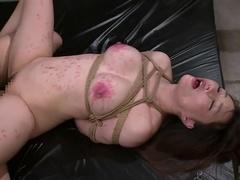 Cock Sucking Porn Videos From Haruka Aizawa