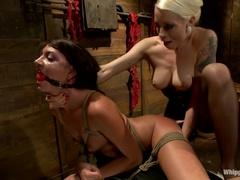 Brunette Porn Videos From Lorlei Lee And Cassandra Nicks